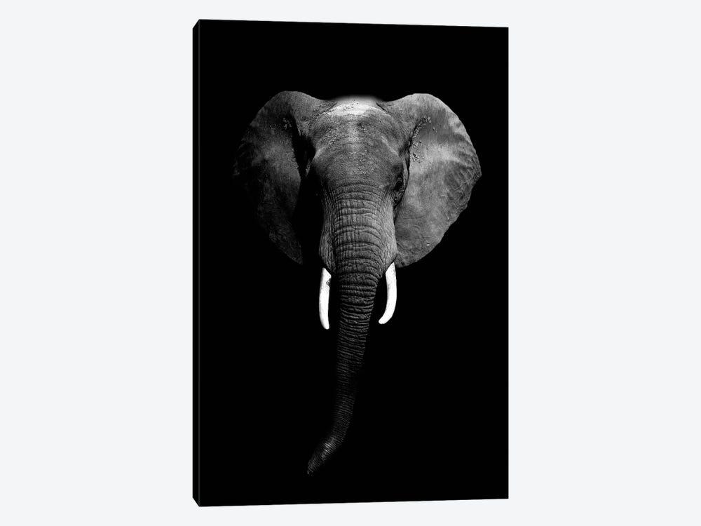 Dark Elephant I by Wouter Rikken 1-piece Canvas Art