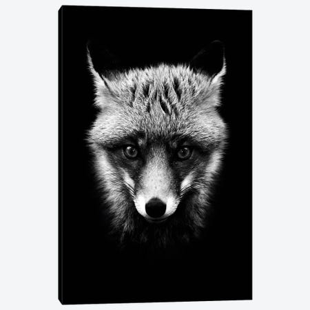 Dark Fox Canvas Print #WRI19} by Wouter Rikken Canvas Print