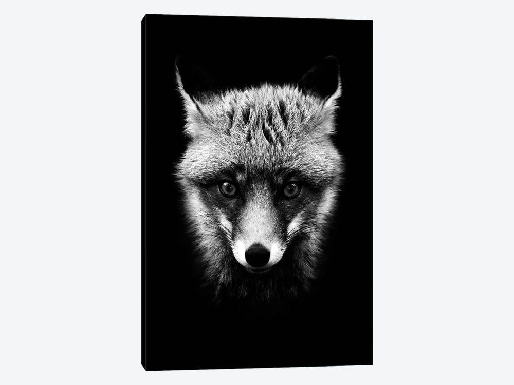 Dark Fox by Wouter Rikken 1-piece Canvas Wall Art