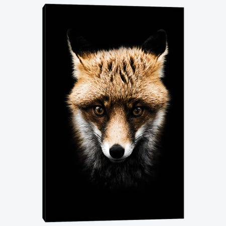 Dark Fox, Color 3-Piece Canvas #WRI20} by Wouter Rikken Canvas Artwork