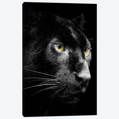 Dark Jaguar Canvas Print #WRI26} by Wouter Rikken Canvas Art Print
