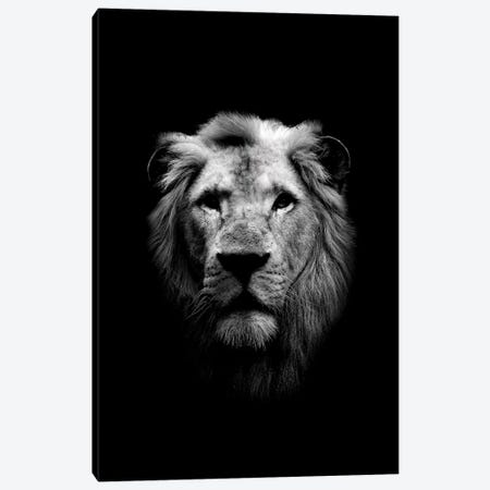 Dark Lion Canvas Print #WRI27} by Wouter Rikken Canvas Art Print