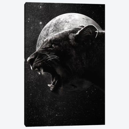 Dark Lioness Canvas Print #WRI29} by Wouter Rikken Canvas Art