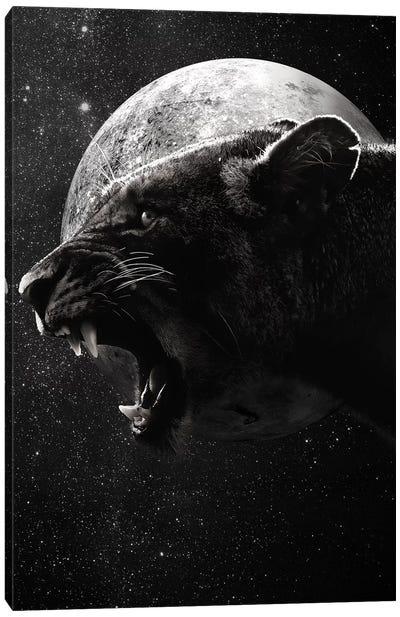 Dark Lioness Canvas Art Print