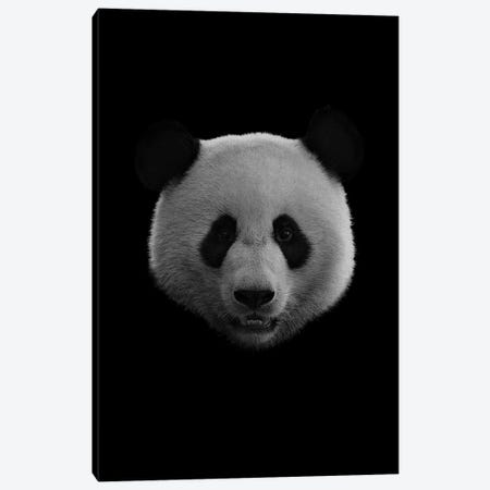 Dark Panda Canvas Print #WRI33} by Wouter Rikken Canvas Art Print