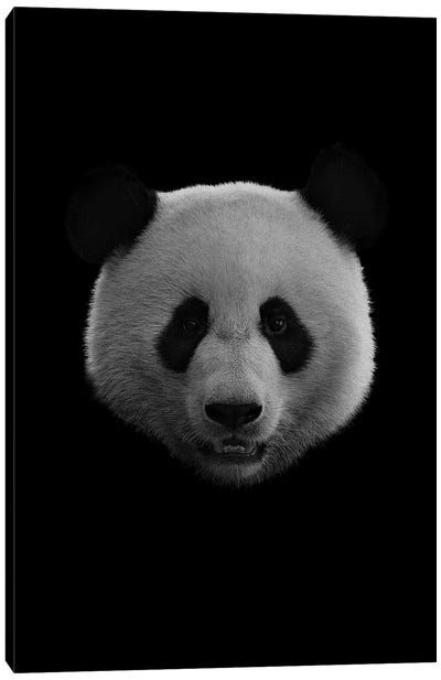 Dark Panda Canvas Art Print