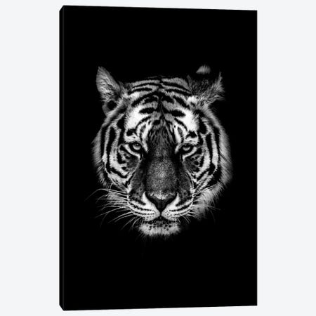 Dark Tiger I Canvas Print #WRI38} by Wouter Rikken Art Print