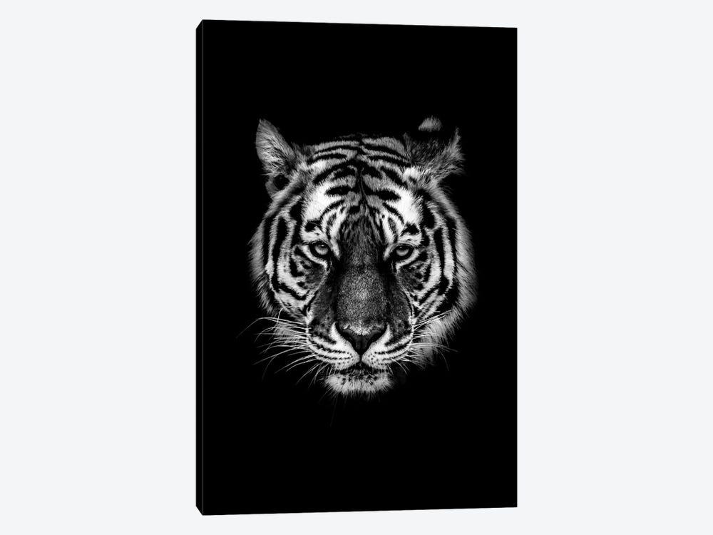 Dark Tiger I by Wouter Rikken 1-piece Canvas Art Print