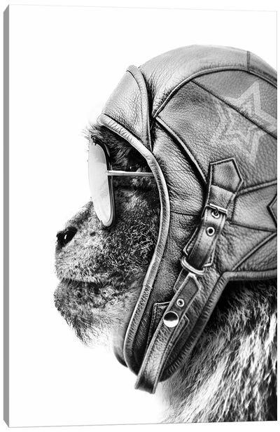 Aviator Monkey Canvas Art Print