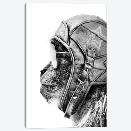 Aviator Monkey 3-Piece Canvas #WRI3} by Wouter Rikken Canvas Art