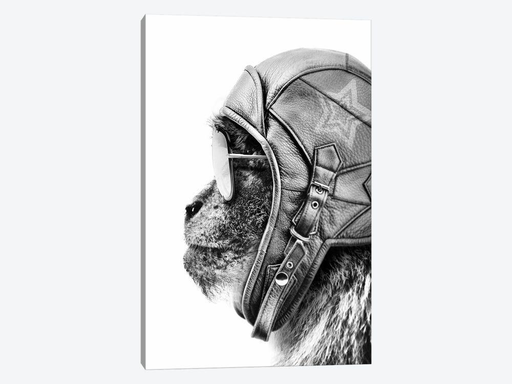 Aviator Monkey by Wouter Rikken 1-piece Art Print