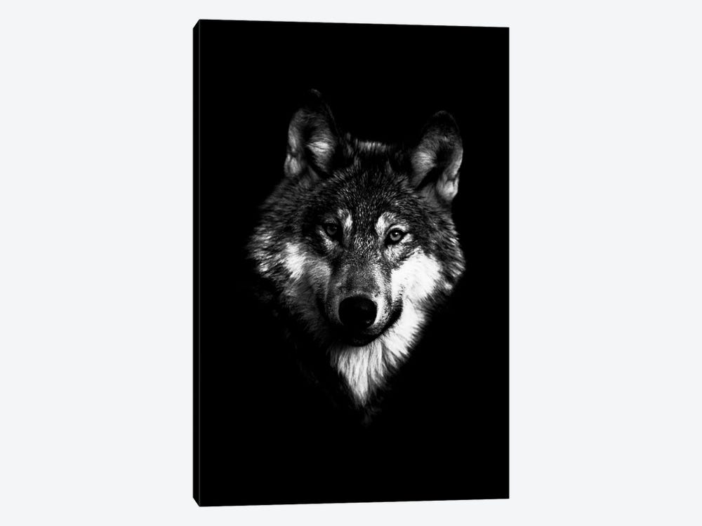 Dark Wolf I by Wouter Rikken 1-piece Canvas Art Print