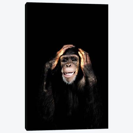 Hear No Evil Canvas Print #WRI52} by Wouter Rikken Canvas Print