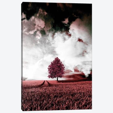 Red Autumn Canvas Print #WRI60} by Wouter Rikken Canvas Art