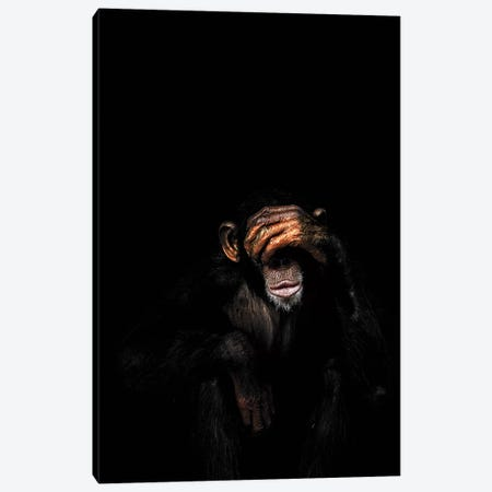 See No Evil Canvas Print #WRI63} by Wouter Rikken Canvas Art