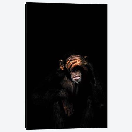 See No Evil Canvas Print #WRI63} by Wouter Rikken Canvas Art