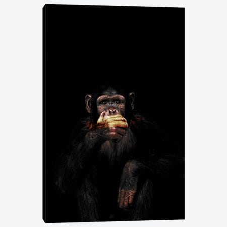 Speak No Evil 3-Piece Canvas #WRI65} by Wouter Rikken Art Print