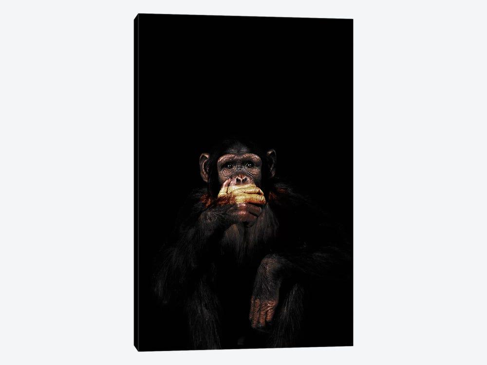 Speak No Evil by Wouter Rikken 1-piece Canvas Print