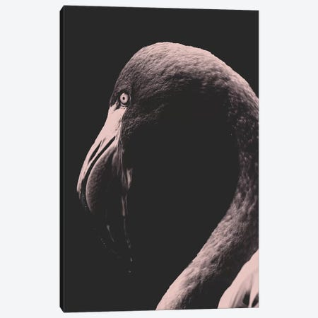 Vintage Flamingo Canvas Print #WRI69} by Wouter Rikken Canvas Wall Art