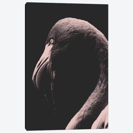 Vintage Flamingo 3-Piece Canvas #WRI69} by Wouter Rikken Canvas Wall Art