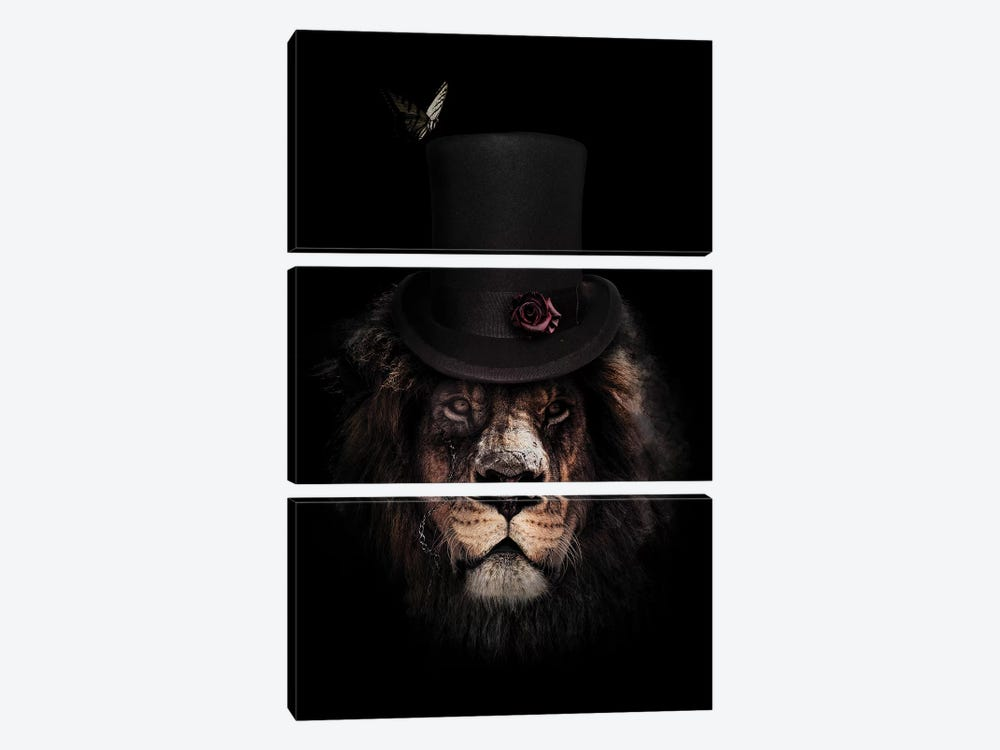 Classy Lion by Wouter Rikken 3-piece Canvas Art