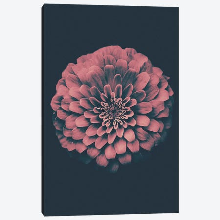 Vintage Flower Canvas Print #WRI70} by Wouter Rikken Canvas Print