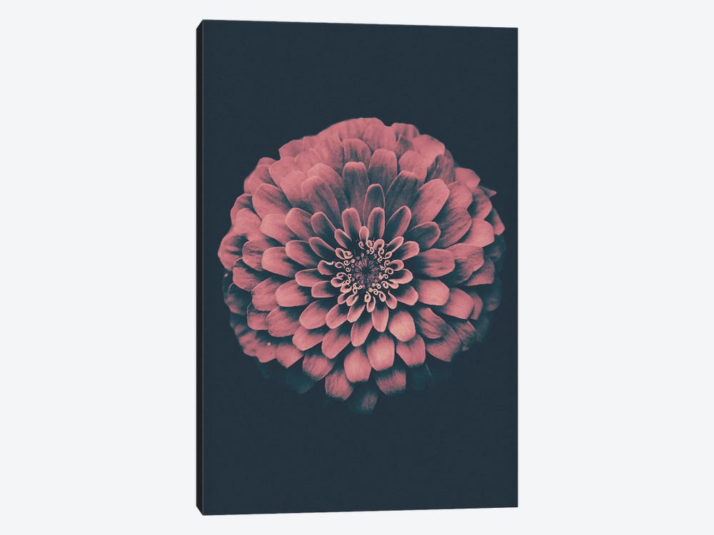 Vintage Flower by Wouter Rikken 1-piece Canvas Art Print