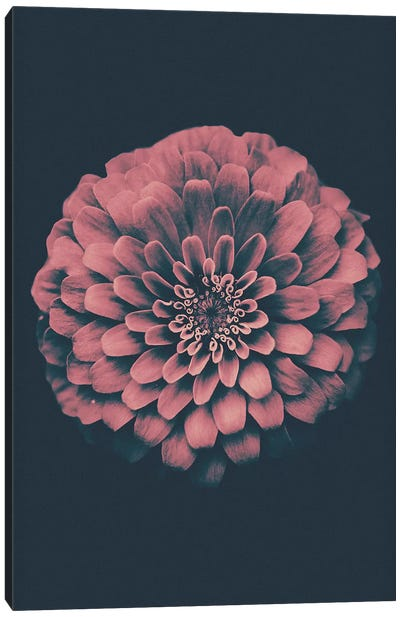 Vintage Flower Canvas Art Print