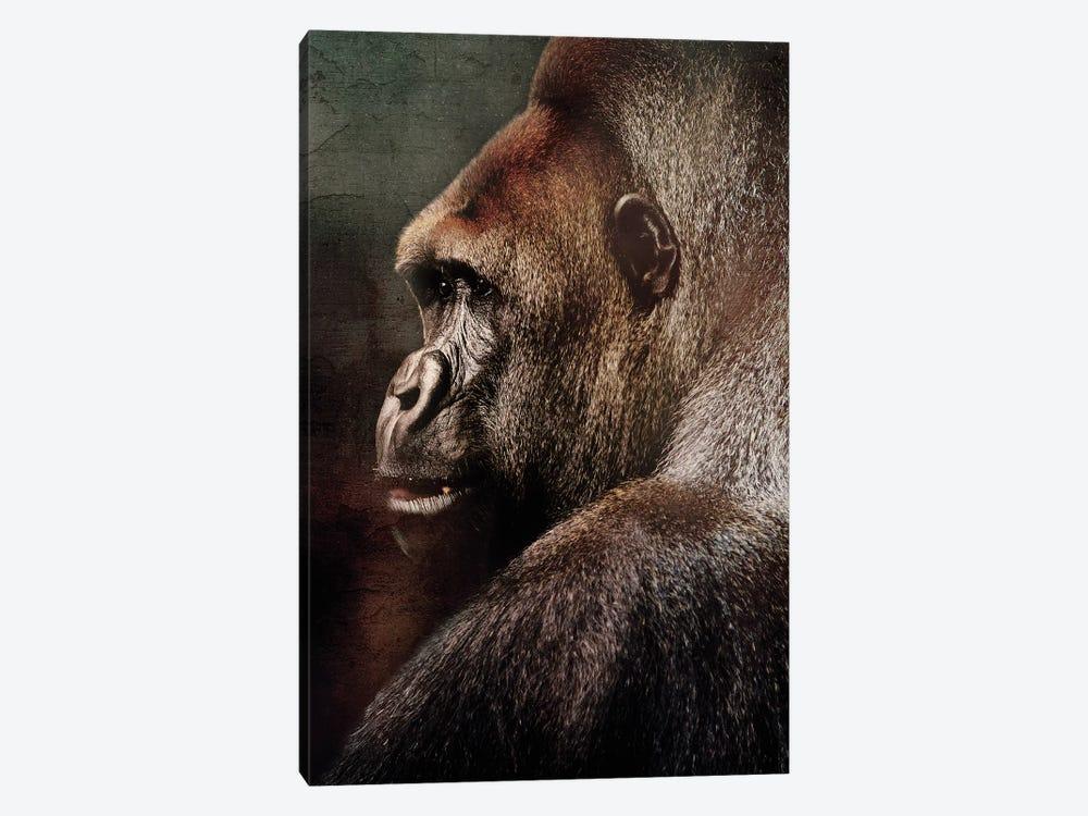 Vintage Gorilla by Wouter Rikken 1-piece Canvas Artwork