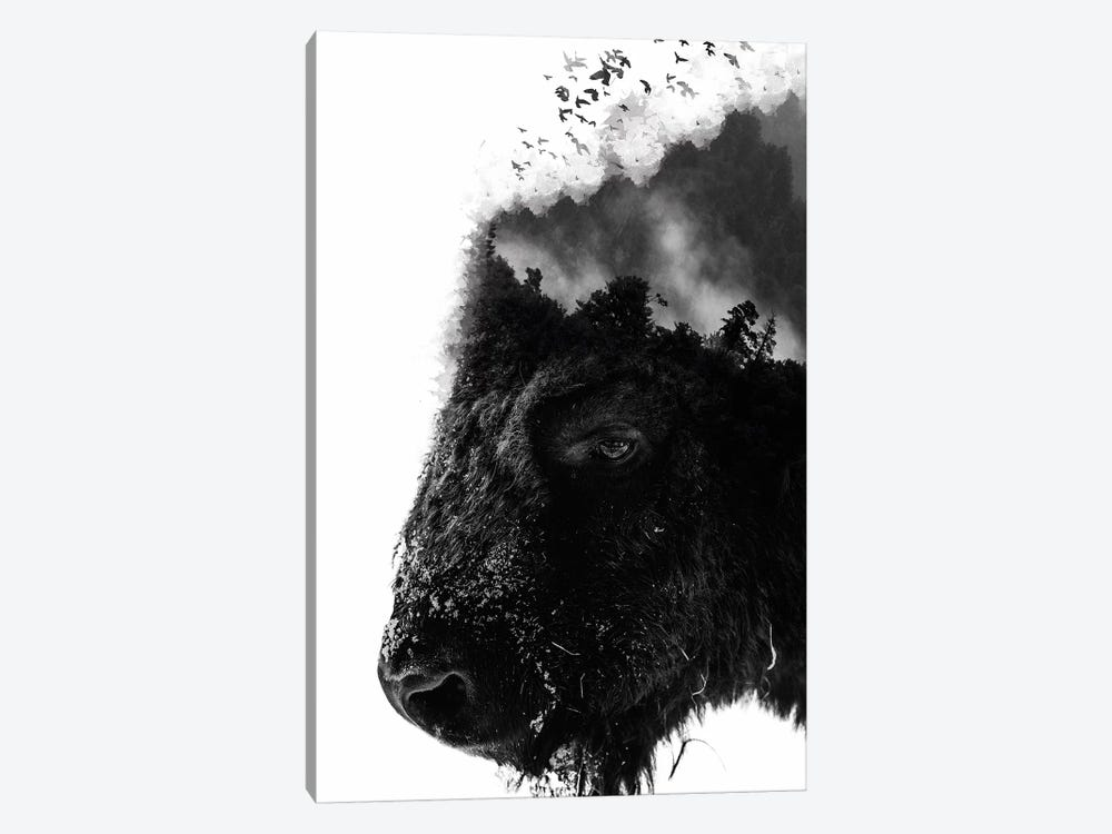 White Bison by Wouter Rikken 1-piece Art Print