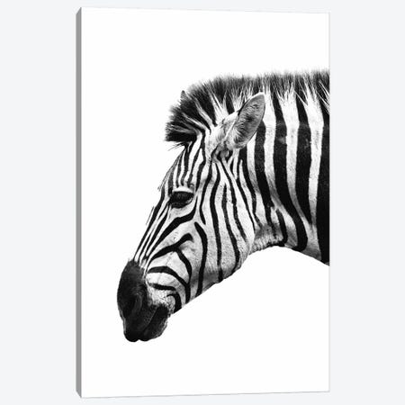 White Zebra Canvas Print #WRI80} by Wouter Rikken Canvas Art