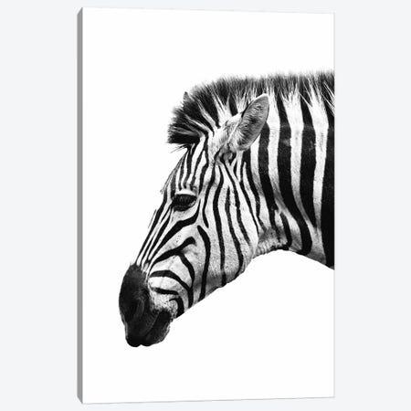 White Zebra Canvas Print #WRI80} by Wouter Rikken Canvas Art