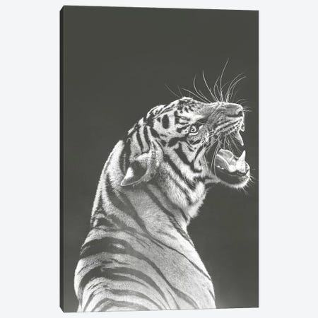 Grey Tiger Canvas Print #WRI86} by Wouter Rikken Art Print