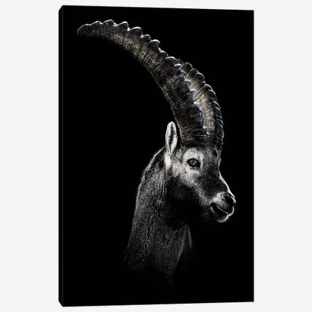 Dark Capricorn Canvas Print #WRI8} by Wouter Rikken Canvas Wall Art