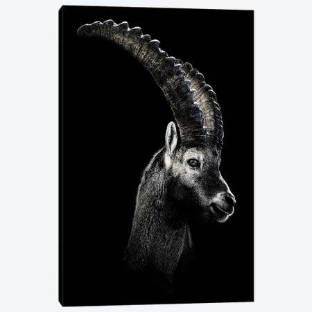 Dark Capricorn Canvas Print #WRI8} by Wouter Rikken Canvas Wall Art