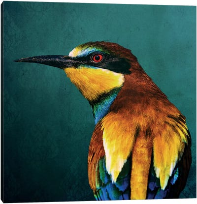 Bee-Eater Canvas Art Print