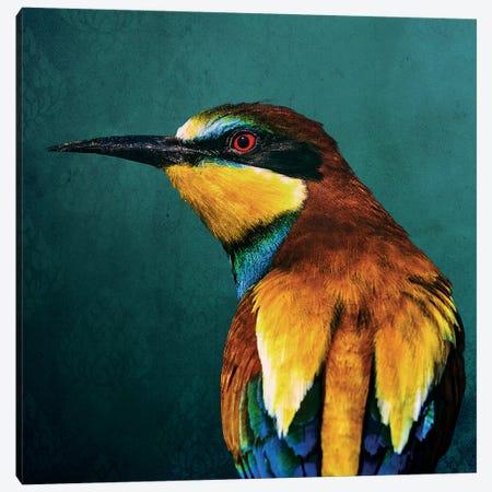 Bee-Eater 3-Piece Canvas #WRI90} by Wouter Rikken Canvas Art Print