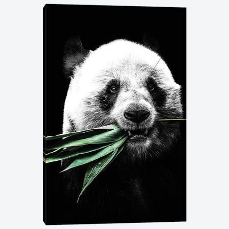 Dark Panda II Canvas Print #WRI95} by Wouter Rikken Canvas Art