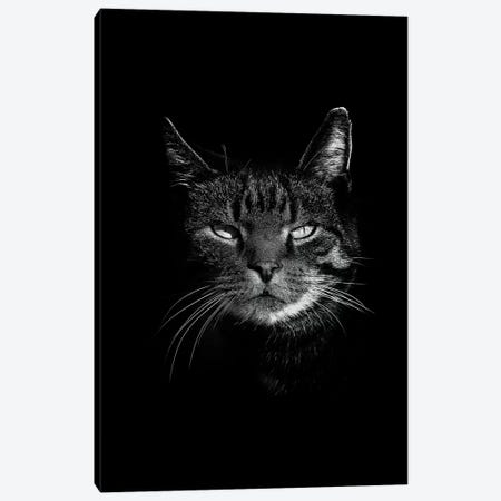 Dark Cat Canvas Print #WRI9} by Wouter Rikken Canvas Wall Art