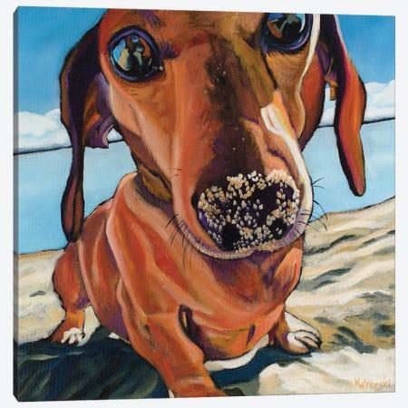 Sand Dog Canvas Print #WRO8} by Kathryn Wronski Canvas Art