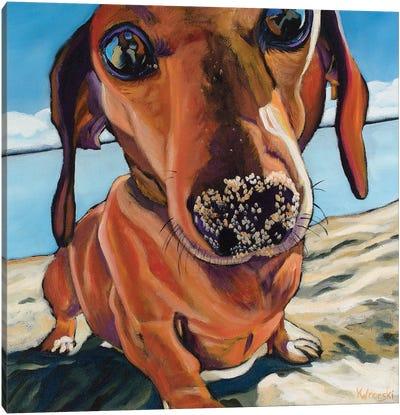 Sand Dog Canvas Art Print