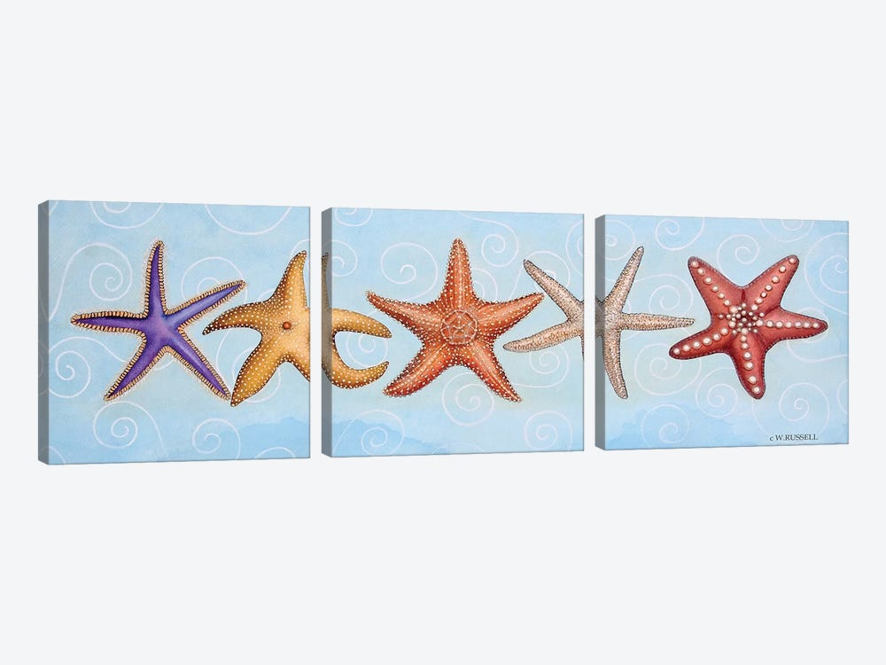 2-UP Sea Dwellers II by Wendy Russell 3-piece Canvas Art Print
