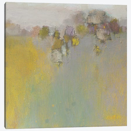 Variation On An Impression Canvas Print #WSL122} by Wayne Sleeth Art Print