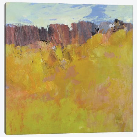 Ardeche Canvas Print #WSL34} by Wayne Sleeth Canvas Art