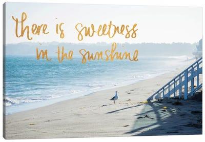 Sweetness In The Sunshine Canvas Art Print