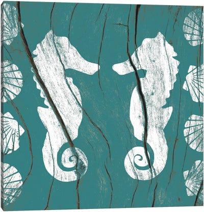 Sea Mates and Shells Canvas Art Print
