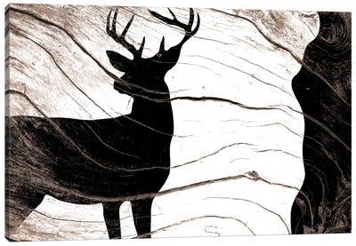 Found In The Wild Canvas Art Print