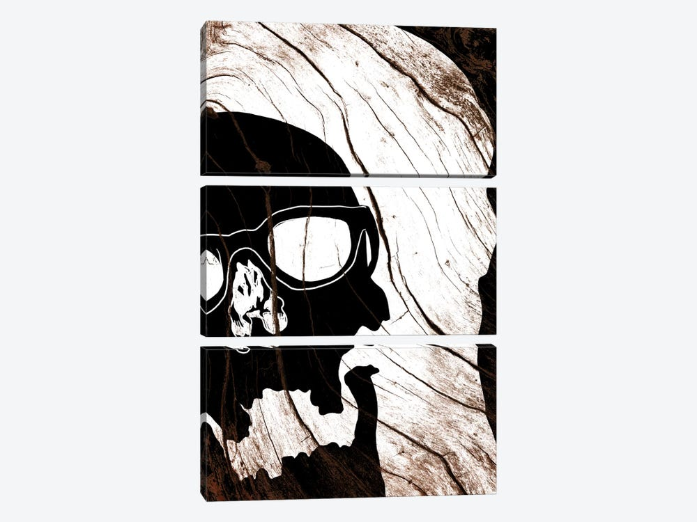 Hipster Skull by 5by5collective 3-piece Canvas Wall Art