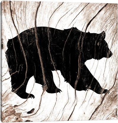 Black Bear Canvas Print #WWB4