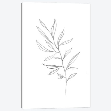 Line Art Plant Canvas Print #WWY111} by Whales Way Canvas Art Print